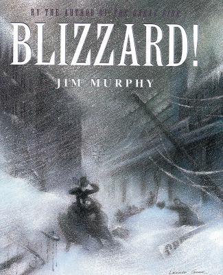 Blizzard by Murphy